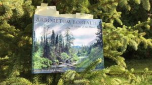 From The Pharmacy of Nature: Tree Air Medicine is Yours