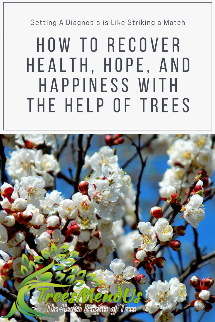 trees to recover health hope and happiness treesmendus